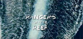 Rangers of the Reef: A documentary short on Misool's no-take zone Photo