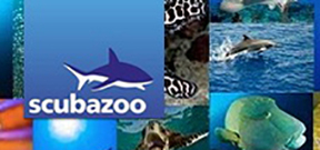 Scubazoo produces new educational videos Photo