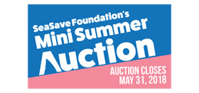 Bid now: Sea Save Summer Auction Photo