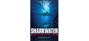 Trailer for Sharkwater Extinction has been released Photo