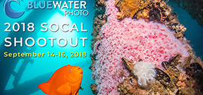 Call for Entries: 2018 SoCal Shootout Photo