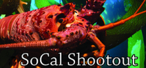 Bluewater Photo announces the SoCal Shootout Photo