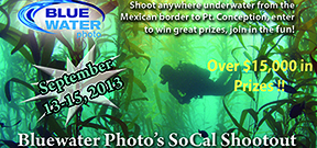 Call for entrants: SoCal Shootout Photo