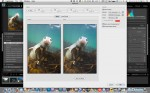 Mini review: Lightroom SoftProof plug-in Photo
