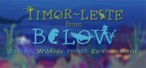 Episode 3 of Timor Leste from Below has been released Photo
