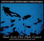 Timor-Leste underwater photo competition results announced Photo