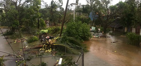 Cyclone Gita devastates island nation of Tonga Photo