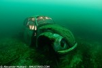 Your best underwater image in 2009 Photo