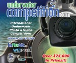 2009 International Underwater Photo & Video Competitions Photo