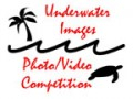 Underwater Images Photo Contest 2005 Results Photo