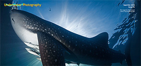 Issue 92 of Underwater Photography magazine available Photo