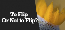 Wetpixel Live: To Flip or Not to Flip Photo