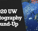 Wetpixel Live: 2020 UW Photography Round-Up Photo