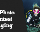 Wetpixel Live: UW Photo Contest Judging Photo