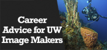 Wetpixel Live: Career Advice for UW Image Makers Photo