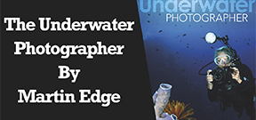 Wetpixel Live: Martin Edge's The Underwater Photographer Photo