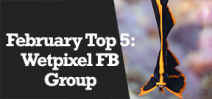 Wetpixel Live: Facebook Group Top 5 Images for February Photo