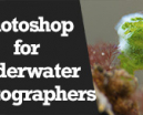 Wetpixel Live: Photoshop for Underwater Photographers Photo