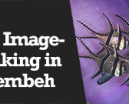 Wetpixel Live: Underwater Imaging in Lembeh Photo