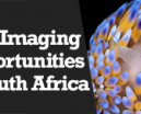 Wetpixel Live: Underwater Imaging in South Africa Photo