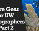 Wetpixel Live: Dive Gear for UW Photographers Part 2 Photo