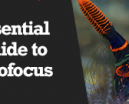 Wetpixel Live: Essential Guide to Autofocus Underwater Photo