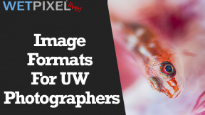 Wetpixel Live: Image Formats for Underwater Photographers Photo