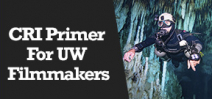 Wetpixel Live: CRI Primer for UW Filmmakers Photo