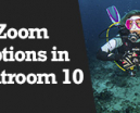Wetpixel Live: Zoom Features in Lightroom 10 Photo