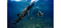 Interview with Shawn Heinrichs and Hannah Fraser Photo