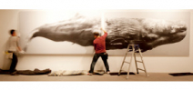 How to print a life size photograph of a whale Photo