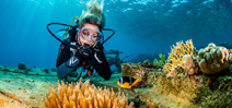 Wetpixel to attend the Red Sea Diving Festival Photo