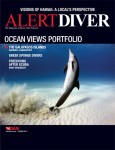 Spring issue of Alert Diver released Photo
