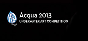 Call for entries: Acqua 2013 Photo