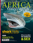 The history and impact of African shark nets Photo
