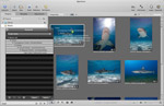 MarineLife Keyword List for Lightroom and Aperture Photo
