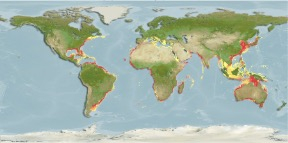 Paper describes AquaMaps global distribution maps Photo