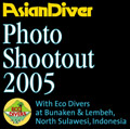 Asian Diver 2005 Shootout, Indonesia Photo