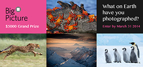 Call for entries: Big Picture 2014 Photo