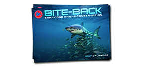 Bite Back calendars on sale Photo