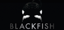 Blackfish now showing in theatres Photo