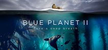 Blue Planet 2: Attenborough on the new series, climate change and optimism Photo
