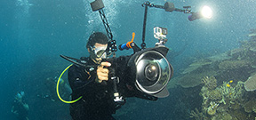 Interview: Jeff Orlowski on the gear used to film Chasing Coral Photo