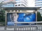 Buy two anti-shark finning billboards in China for $100 Photo