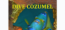 Cozumel diving guide ebook available Photo