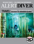 Alert Diver fall issue available online Photo