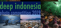Final call for entries to DEEP Indonesia 2019 Photo