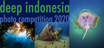 Call for Entries: DEEP Indonesia International Photo Contest Photo