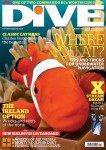 INON bug-eye lens produces cover image for DIVE Magazine Photo