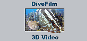 DiveFilm HD launches 3D podcast Photo